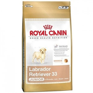 Royal Canin (Роял Канин) Сухой корм для лабрадора Labrador junior 3кг (до 15 мес)